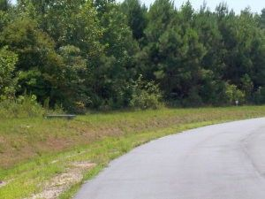 Photo of 57 Eagle Nest Trl, Blounts Creek, NC 27814