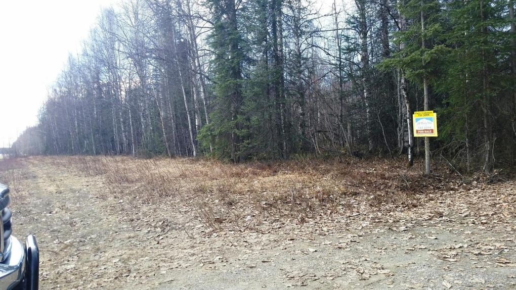 57330 S Parks Hwy, Willow, AK 99688