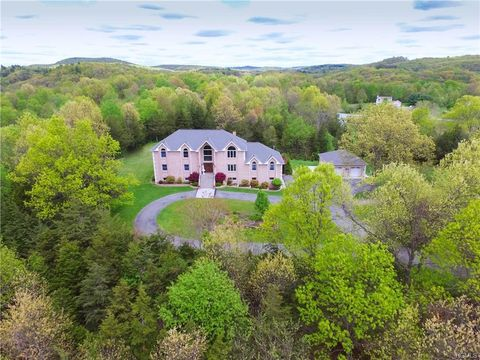 11 Ridgeview Ln, Pleasant Valley, NY 12569