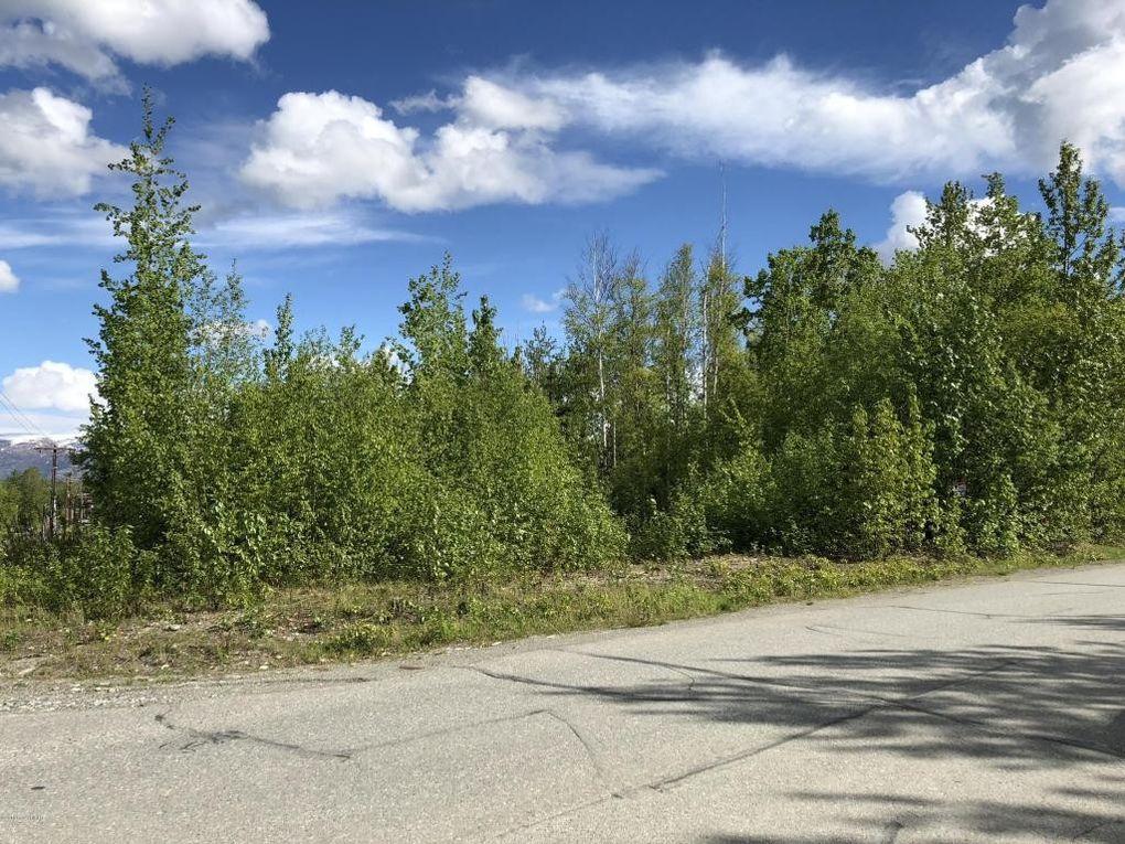 167 E Lake View Ave, Wasilla, AK 99654