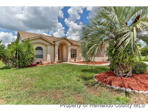 11260 Richford Ln, Spring Hill, FL 34609