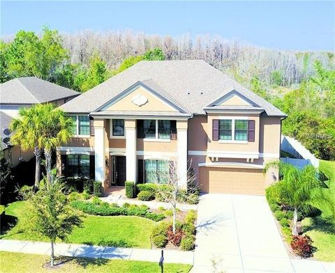 Tampa, FL Houses for Sale with Swimming Pool - realtor.com®