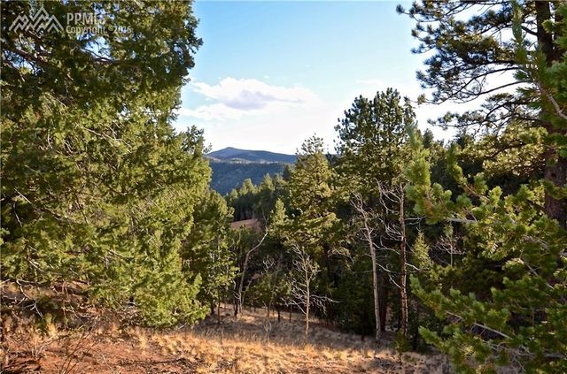 104 rainbow ct divide co 80814 land for sale and real