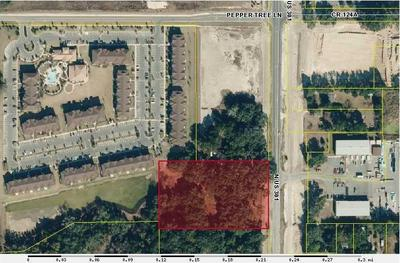 Fran DannAkin Summerfield FL Real Estate Agent Realtorcom - Us route 301 map