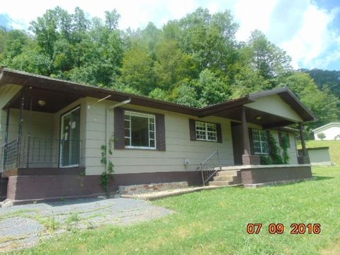 11978 N Big Creek Rd, Belfry, KY 41514