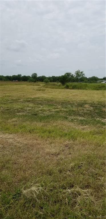 Stites Rd, Donna, TX 78537