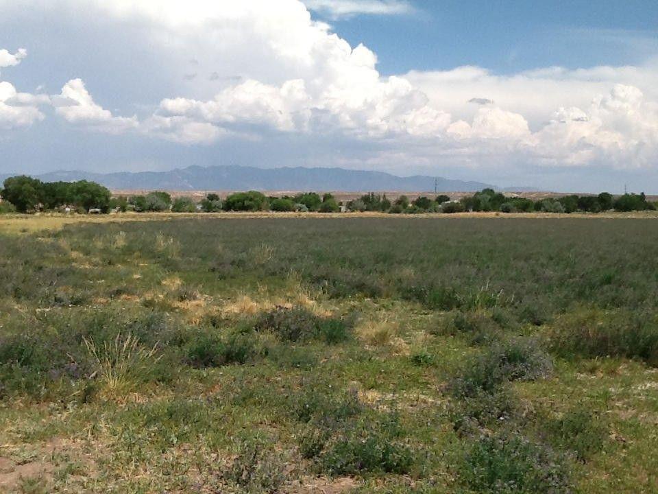 Marquez Rd Los Lunas, NM 87031