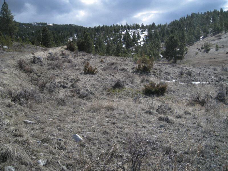 Crest View Ests Lot A1, Helena, MT 59601