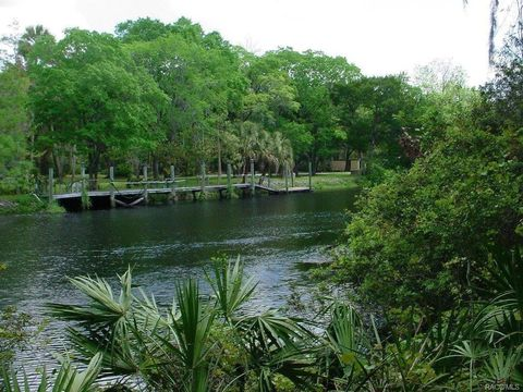 15803 W River Rd, Inglis, FL 34449