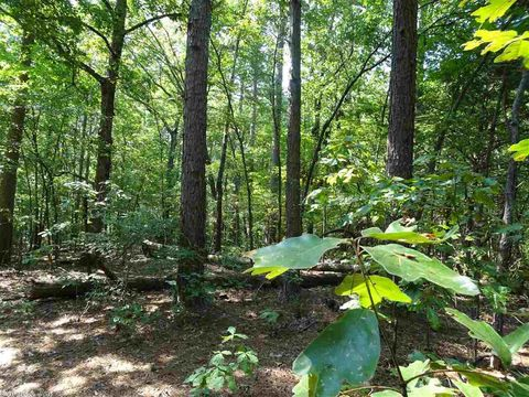 Photo of 001 Highway 13, Hickory Plains, AR 72040