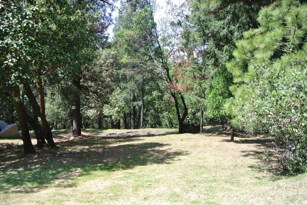 22058 Farrier Ct Foresthill, CA 95631