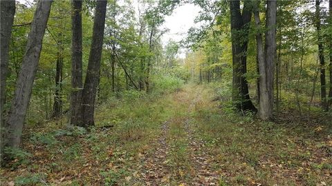 Photo of Township Rd # 86, Lowell, OH 45744