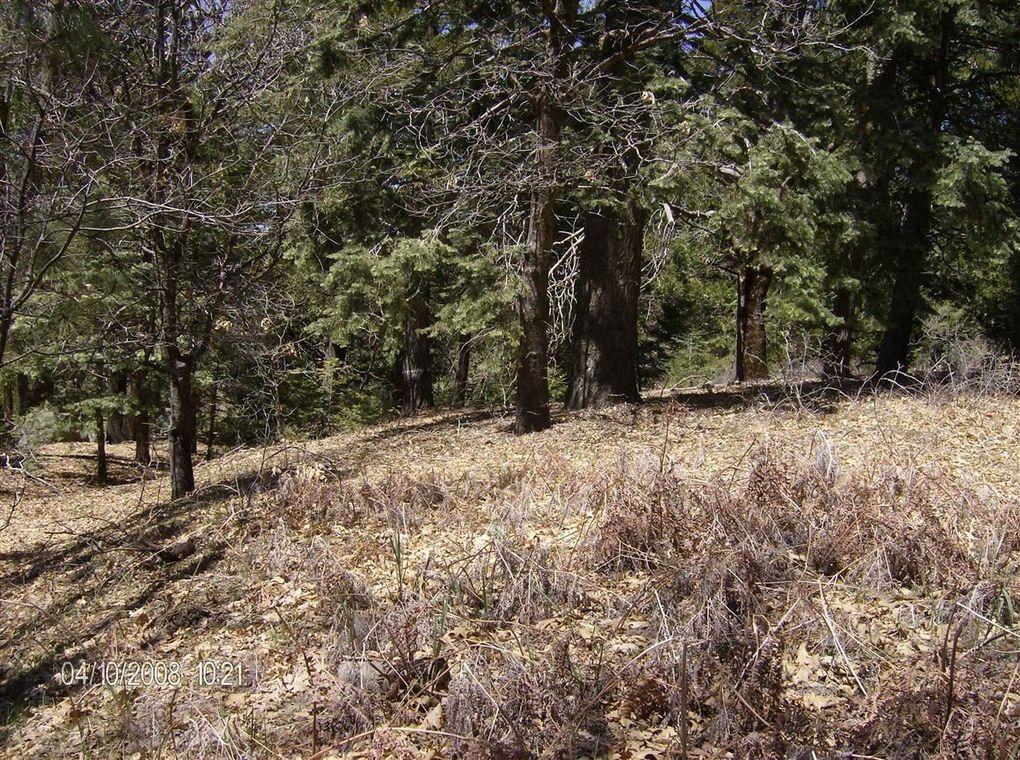 Palomar Mountain Rental Homes