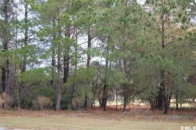Cat Island South Carolina Rentals