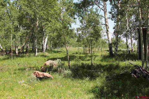 3043 D Rd, Powderhorn, CO 81243