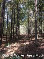 The Coves At Crooked Crk Lot 24, Logan, AL 35098