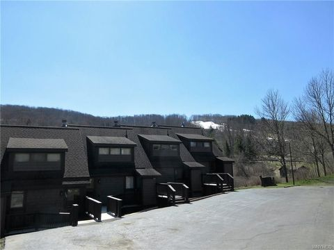 Photo of 103 Brookline Rd-the Woods, Ellicottville, NY 14731