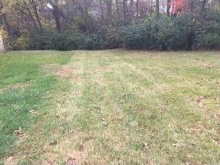 Lot 1 Raytown, MO 64138