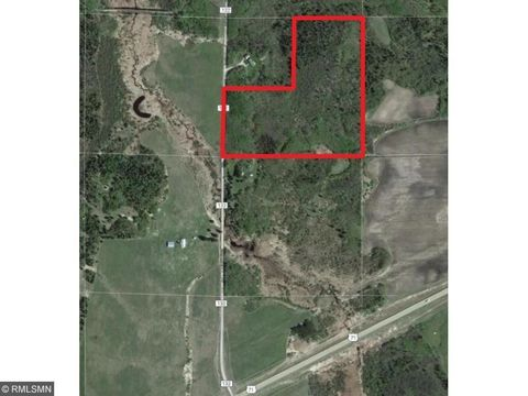 X County Road 132, Northome, MN 56661