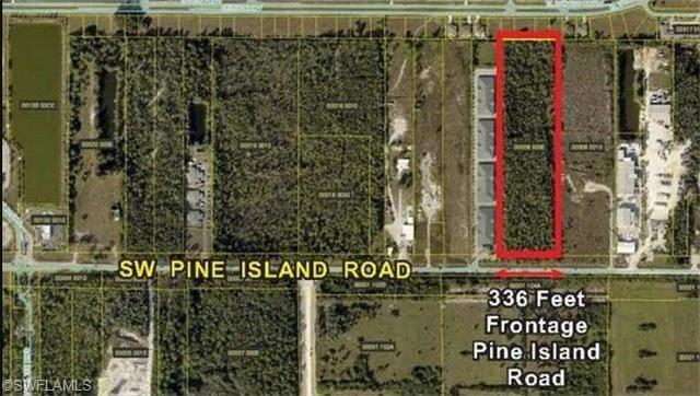 Pine Island Elementary Fl