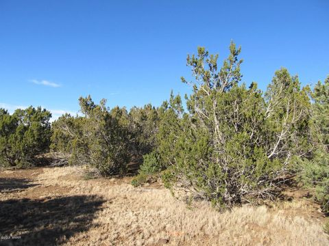 Photo of Show Low Highlands Lot 326, Vernon, AZ 85940