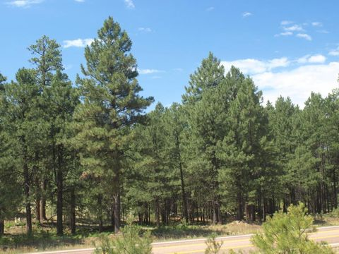 2692 State Route 260 Lot 895, Forest Lakes, AZ 85931