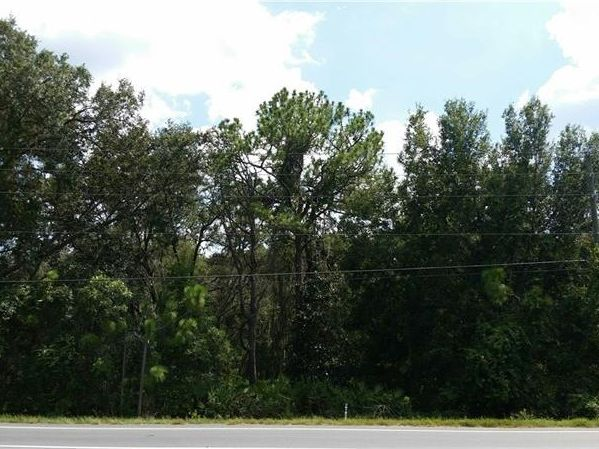 county road 48 yalaha fl 34797 land for sale and real