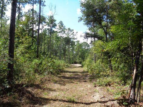 Photo of Barksdale Rd/greenhouse Rd, Gordon, AL 36343