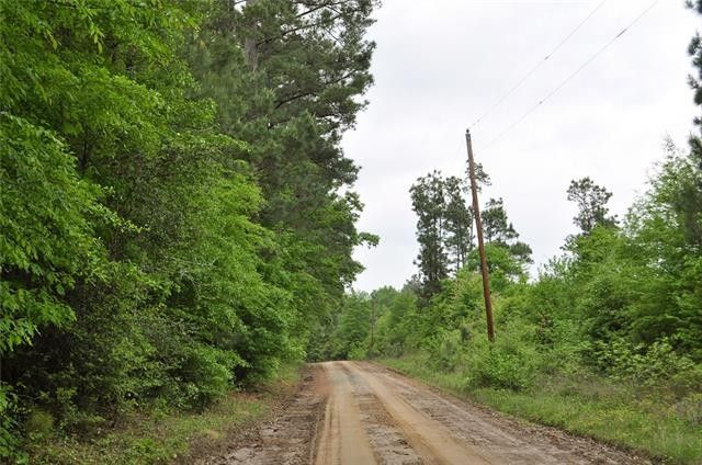 county road 364 zavalla tx 75949 land for sale and