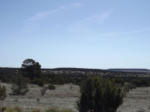 Photo of Gallegos Rd, Tijeras, NM 87059