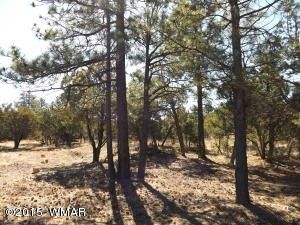 2217 Mountain Lion Ln, Overgaard, AZ 85933
