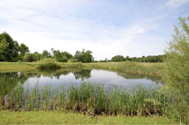 Benton County Minnesota Property Tax