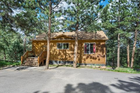 84 S Laura Ave, Pine, CO 80470