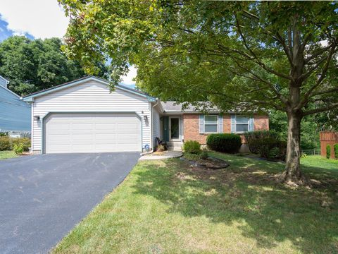 Stupendous 254 Camrose Ct Gahanna Oh 43230 Home Interior And Landscaping Fragforummapetitesourisinfo