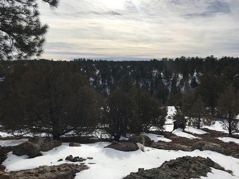 Photo of Off County Road 131 Mesa De Las Viejas, Tierra Amarilla, NM 87575