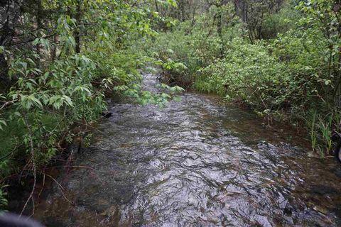 1100 Squirrel Creek Rd, Quincy, CA 95971