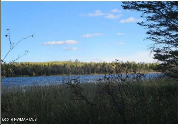 190th st bagley mn 56621 land for sale and real estate listing