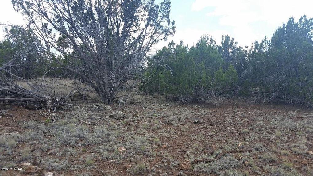 1547 Navajo Rd, Show Low, AZ 85901