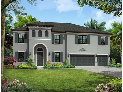 33647 new homes for sale tampa fl 33647 new construction and real estate