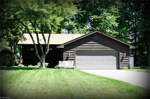 3001 Blue Spruce Ct, Perry, OH 44081