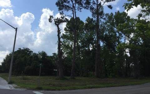 Baya Ave, Lake City, FL 32055