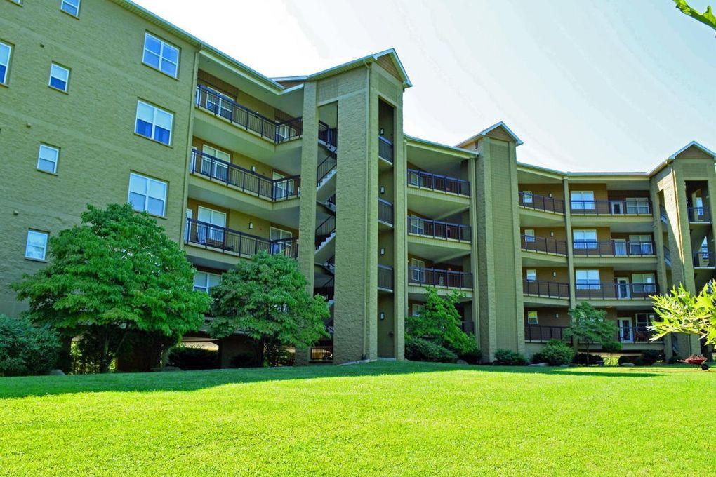 Gatlinburg Tn Rental Properties For Sale