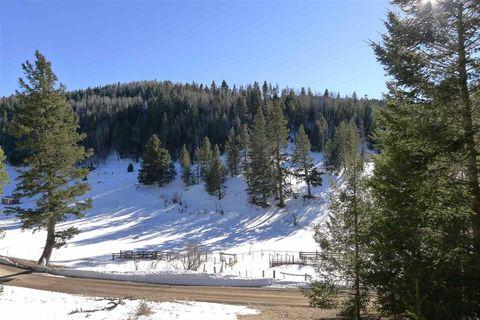 90 Pierce Canyon Rd, Cloudcroft, NM 88317