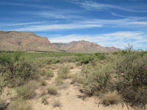 Photo of E Cielo Vista Rd, Portal, AZ 85632