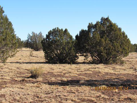 Photo of 1 Juniperwood, Ash Fork, AZ 86320