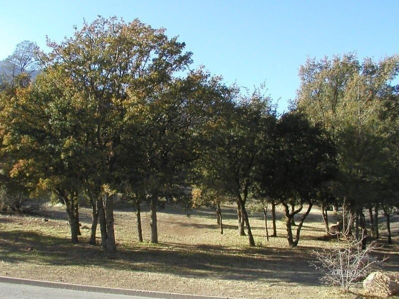 200 grove park way kernville ca 93238 land for sale and real estate listing