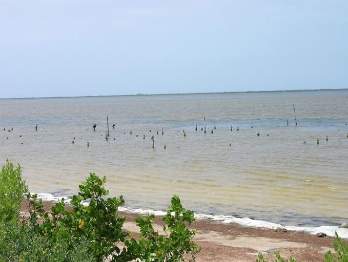 161 jones fish camp rd edgewater fl 32141 for Fish camps for sale in florida