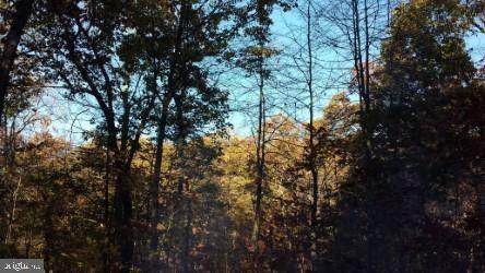 Leafy Hollow Ln, Berkeley Springs, WV 25411