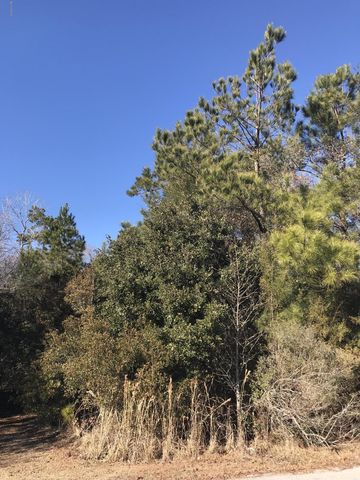 Photo of 9722 Rivergate Rd Nw Lot 11, Ash, NC 28420