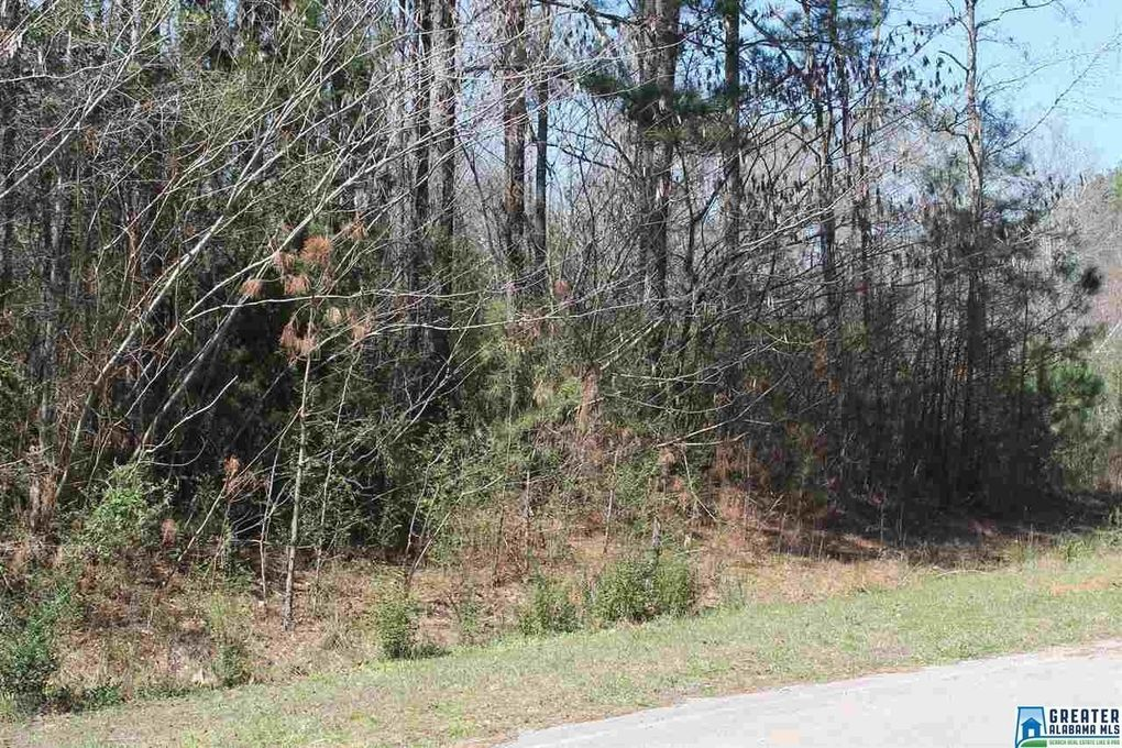 Clarendon Rd Lot 60, Cullman, AL 35057